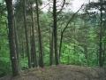 Annabrzeskie Wąwozy