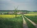 Mierzów i Wzgórza Dalkowskie