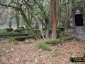 Ługi, niemiecki cmentarz
