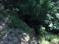 Czarna-Struga-Nowogrod-Bobrzanski-Klepina-Zrodlo-rzeki (23)