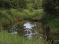 Jarogniewice---Ksiaz-Slaski-(5)