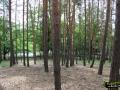 Ksiaz-Polski---Lelechow-(16)