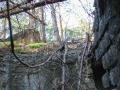 Ruina w lesie