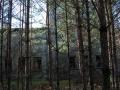 Fabryka w lesie