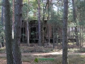 Budynek w lesie