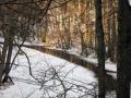 dolina-pliszki-rzeka-zima-1