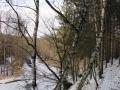 dolina-pliszki-rzeka-zima-15
