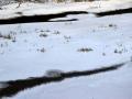 dolina-pliszki-rzeka-zima-16