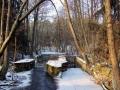 dolina-pliszki-rzeka-zima-27