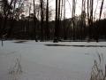 dolina-pliszki-rzeka-zima-29