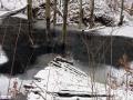dolina-pliszki-rzeka-zima-34