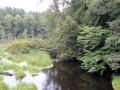 pliszka-rzeka-5