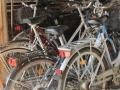 Wypożyczalnia rowerów  w Gądkowie