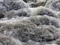 rzeka-pliszka-kokoszka-sadow-15
