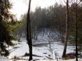 rzeka-pliszka-kokoszka-sadow-3