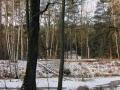 rzeka-pliszka-kokoszka-sadow-4