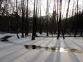 rzeka-pliszka-kokoszka-sadow-9