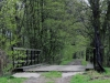 Drewniany most
