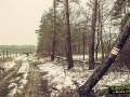 5a-Szlaki-turystyczne-czerwony-zolty-kargowa
