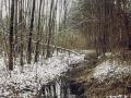 8-rozlewiska-kanal-Obrzyca