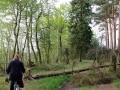 Droga z Wojnowa nad Jezioro Liny