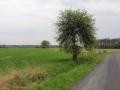 Droga Borów Wielki