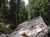 wejscie-na-triglav-wyprawa-w-alpy-julijskie-szczyt-41