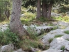 wejscie-na-triglav-wyprawa-w-alpy-julijskie-szczyt-51