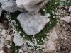 wejscie-na-triglav-wyprawa-w-alpy-julijskie-szczyt-112