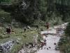 wejscie-na-triglav-wyprawa-w-alpy-julijskie-szczyt-167