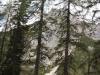 wejscie-na-triglav-wyprawa-w-alpy-julijskie-szczyt-178