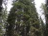 wejscie-na-triglav-wyprawa-w-alpy-julijskie-szczyt-181