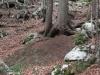 wejscie-na-triglav-wyprawa-w-alpy-julijskie-szczyt-185