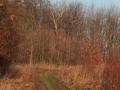 Czarny szlak po Wzgórzach Dalkowskich