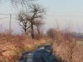Droga do Dalkowa