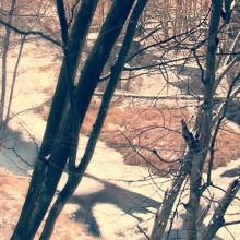 Rzeka Pliszka – szlak kajakowy i piesza wyprawa
