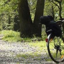 """Międzynarodowy szlak rowerowy """"Odra – Nysa"""" (Oder – Neisse Radweg)"""
